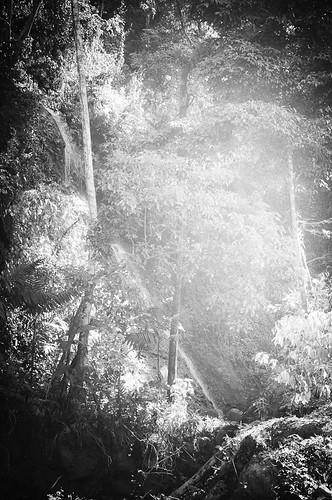 Cascada Arcoiris (10)