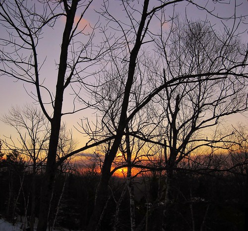 park new trees winter sunset snow tree clouds state dusk low january nh hampshire views weeks 2012 stratocumulus