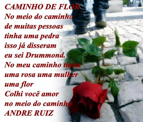 CAMINHO DE FLOR by amigos do poeta