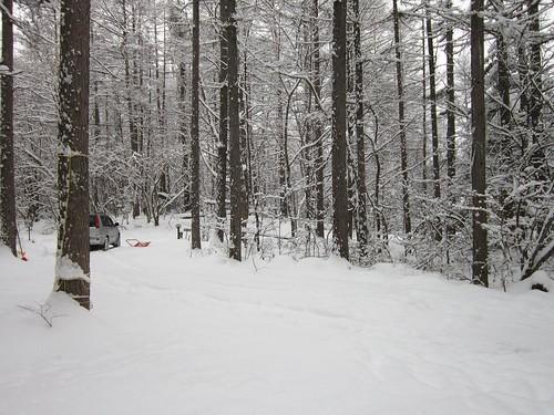 アプローチの積雪 2012年1月20日14:59 by Poran111