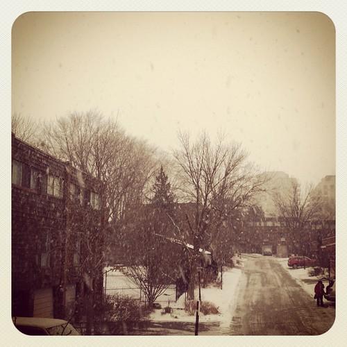 snow like whoa