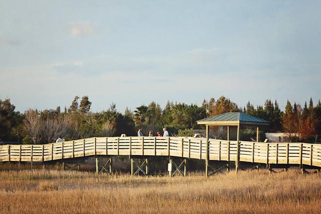Chapel Trail preserve 16