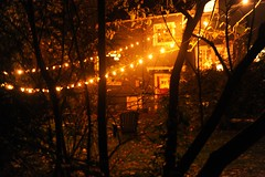 In the hidden city, backyard strung with lights, chairs, trees, red door, winter, U District, Seattle, Washington, USA
