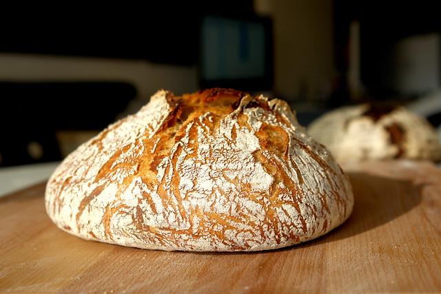11 coaja no knead