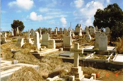 St George's Anglican Cemetery in 1983