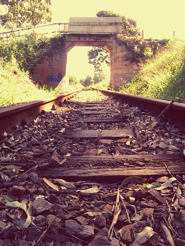 Old Railway Line In Kloof
