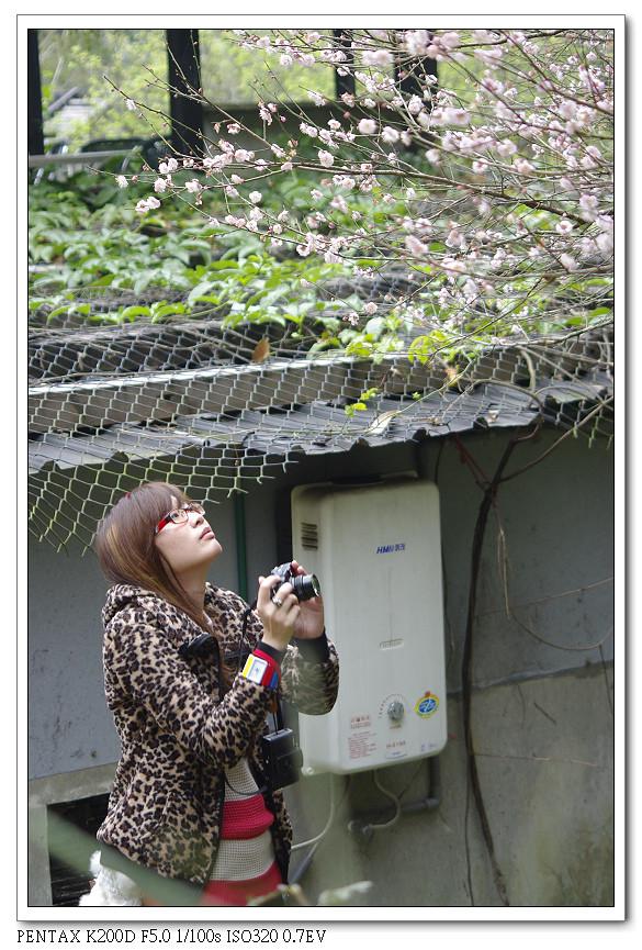 2012-01-28-PFC桃源仙谷