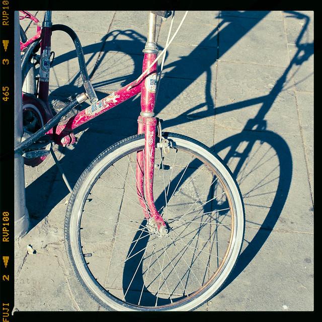 lost bike [+1]