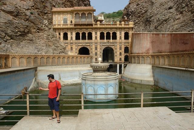 Templo de los monos de Jaipur Galwar Bagh, el templo de los Monos de Jaipur - 13185495395 0ee330e5a4 z - Galwar Bagh, el templo de los Monos de Jaipur