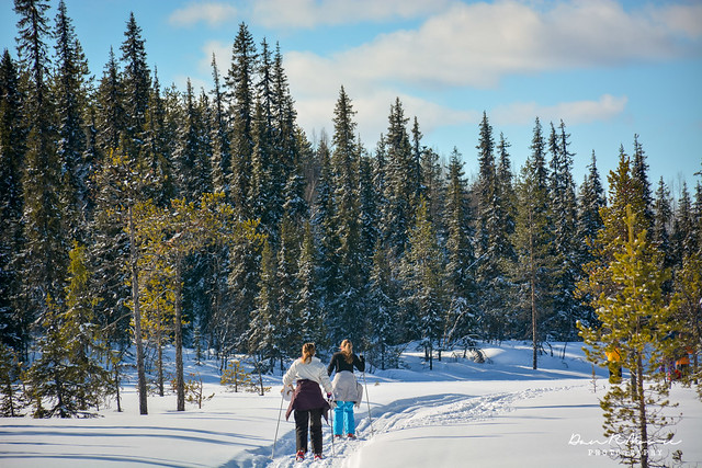 An Arctic Adventure in Swedish Lapland - Cross Country Snow Skiing