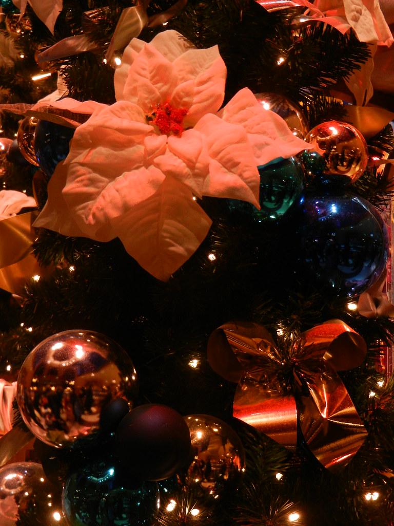 Un séjour pour la Noël à Disneyland et au Royaume d'Arendelle.... 13605048643_052af3dd39_b