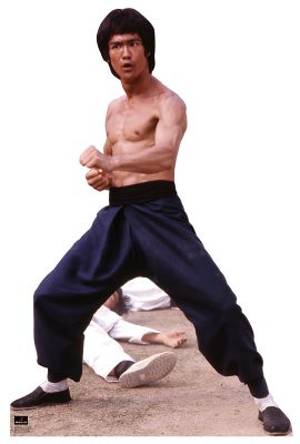 1043-bruce-lee-color_114_general