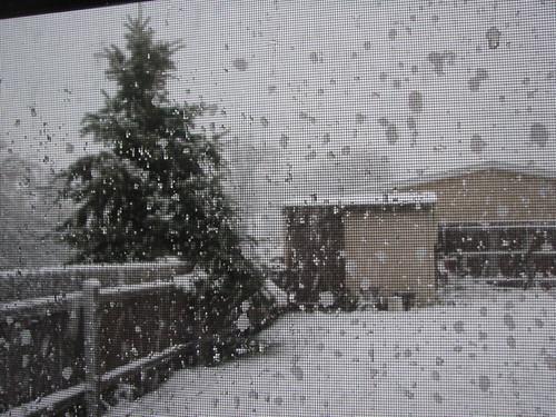 Snow Storm 11-29-11 1