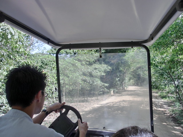 Transfer by Electric Buggy - Six Senses Ninh Van Bay