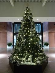 ロビーのクリスマスツリー2011