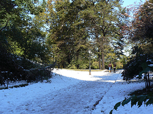 central Park sous la Neige.jpg