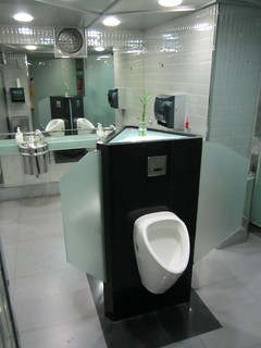 Bizzare Urinal Setup