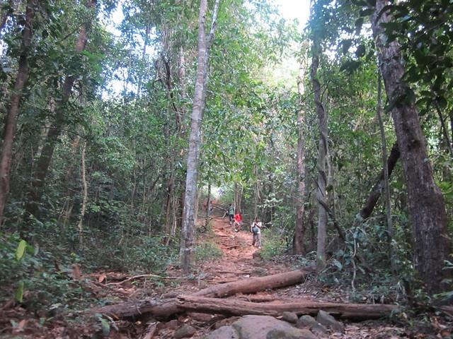 Kumara_Parvatha_Trek_Bhattaramane_to_Kukke_Subramanya_Town1
