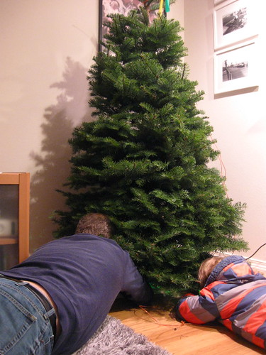Putting up the tree.