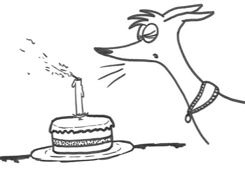 Comic-Whippet-Birthday