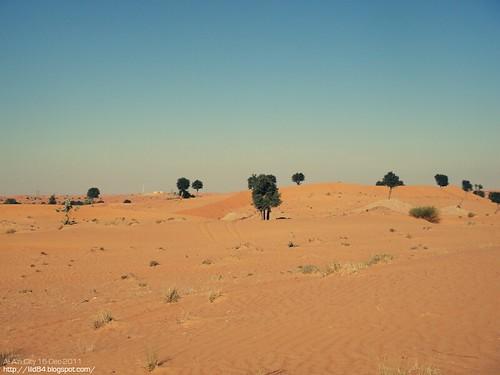 Al Ain Sand~ رملة العين