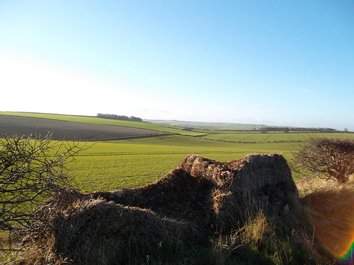 On the byway between Grindale and Rudston