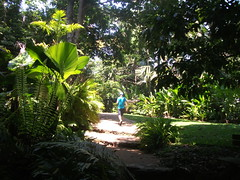 Cairns Botanical Gardens