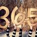 365/365 by Harmony V