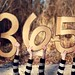 365/365 by Harmony McIntyre