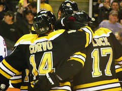 Bruins vs. New York Islanders, November 7, 2011