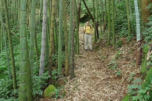 Ruili-Fenqihu Trail - Fenqihu, Taiwan