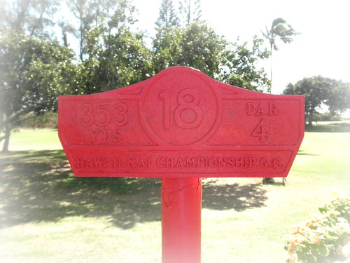 Hawaii Kai Golf Course 193b