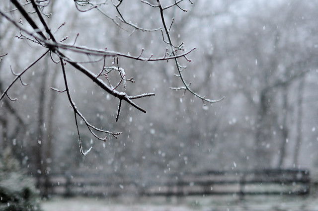 Snow on January 9