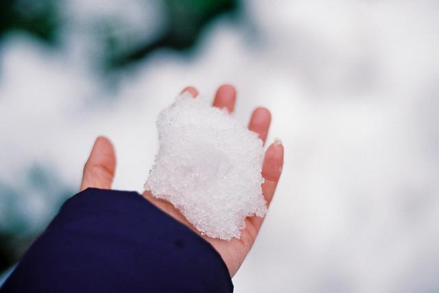 掌中一抔雪