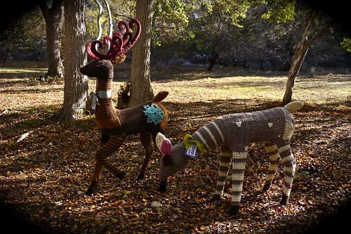 Yarn Bombed Deer