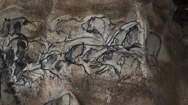cave of forgotten dreams, herzog, Chauvet Cave