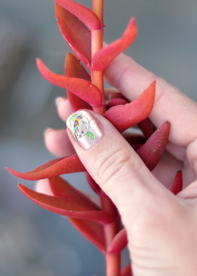 vintage  toucan nail  decals- raemon becca