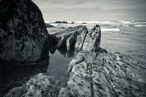 Rock Pool B&W