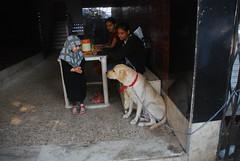 Marziya Shakir and Lucky by firoze shakir photographerno1