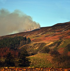 Stubble burning on the hillsides