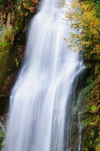 autumn water leaves creek landscape waterfall moss potemfalls