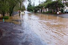 Flood-2493