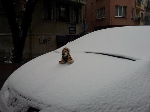 Rumli a hóban