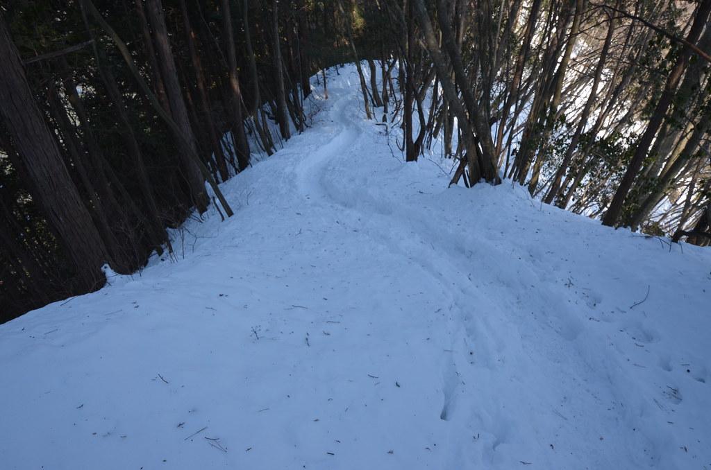スノートレース