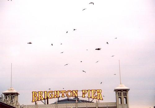 Brighton Pier by xzoeagx