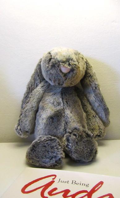 Poppy's bunny