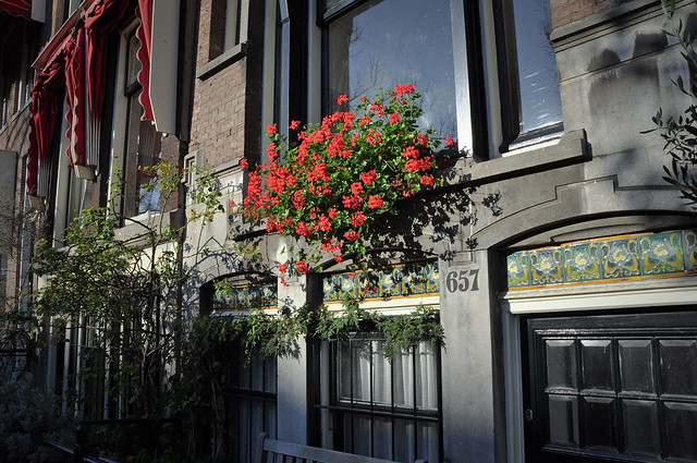 Flowers - details in Amsterdam