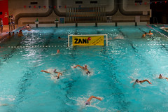 water & ball sports, water polo, swimming pool, swimming, sports, recreation, outdoor recreation, swimmer, water sport,