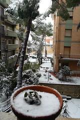 Neve a Roma 04/02/2012