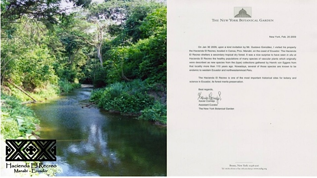 canoa-property